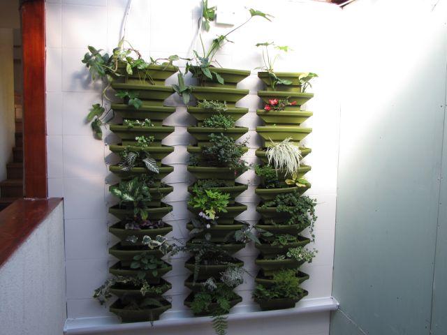 Mur végétal 2