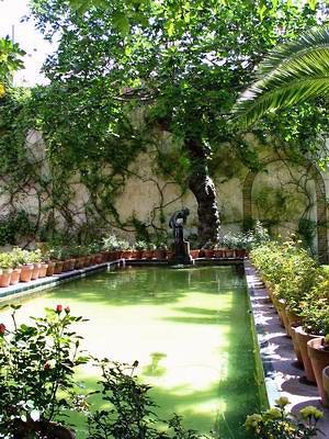 Maison Pilate - Jardin