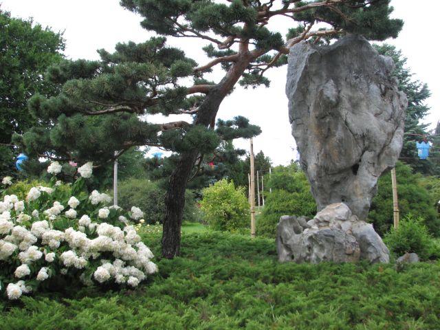 Jardin chinois (c) SB