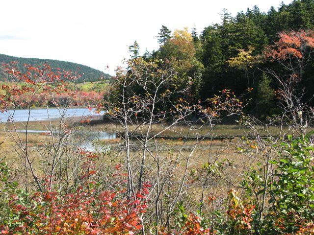 Le Maine tout seul (c) SB