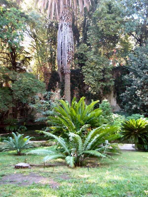 Jardim_botanico_40