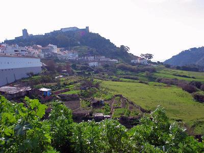 Palmela et sa vallée (c) Sophie Bellais